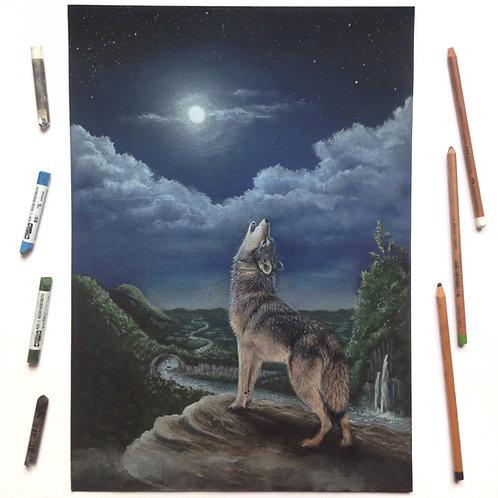Under The Same Stars- Wolf