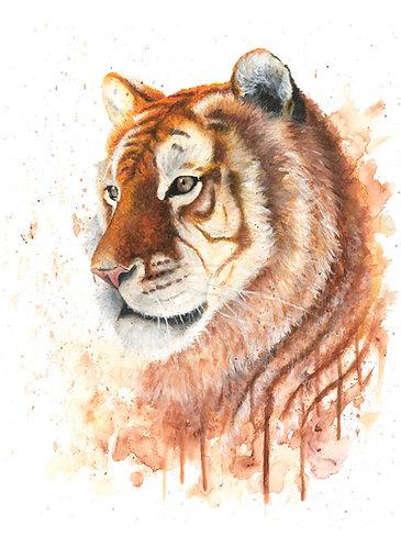 Golden Tiger - Original
