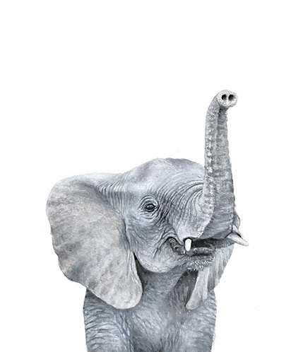 Elephant Portrait - Original