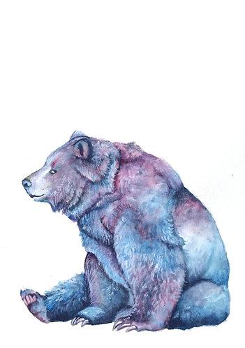 Little Bear - Original