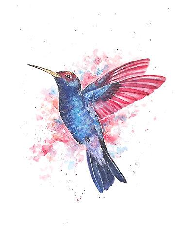 Hummingbird - Original