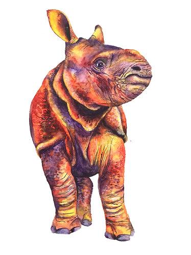 Little Rhino - Original