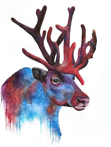 Reindeer - Original