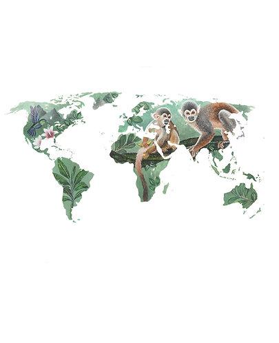 South America - Original