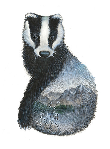 Badger's Home