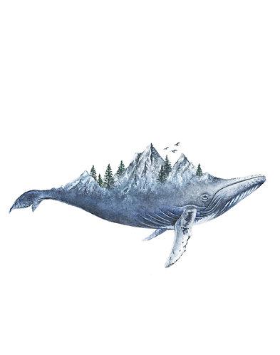 Whale -Original