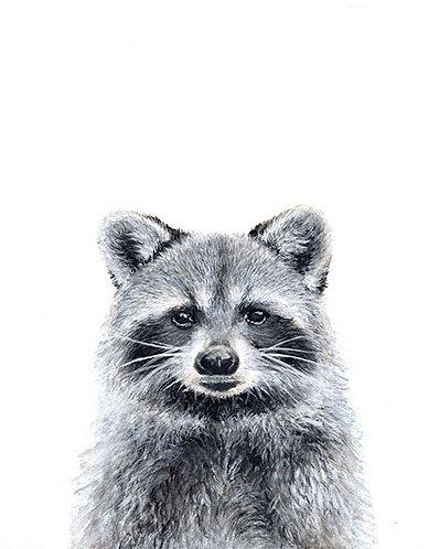 Racoon -Original