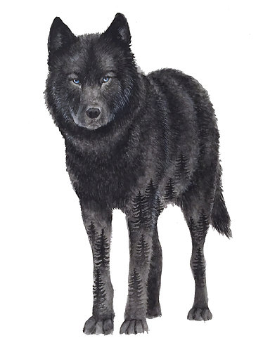 Black Wolf - Original