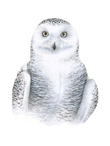 """""""Winter III"""" Snowy Owl"""