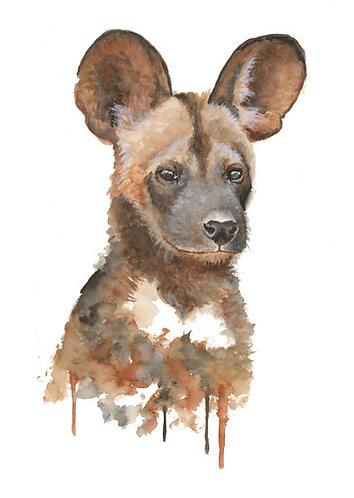 African Wild Dog - Original