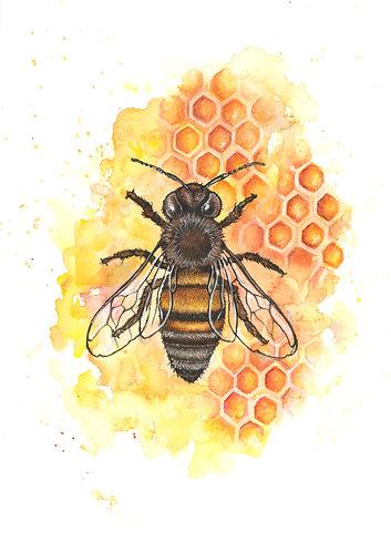 Bee - Original