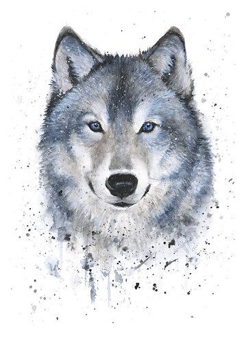 Grey Wolf - Original
