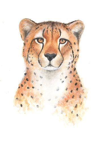 Cheetah - Original