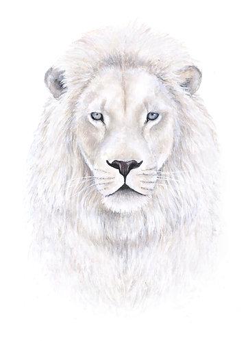 White Lion - Original