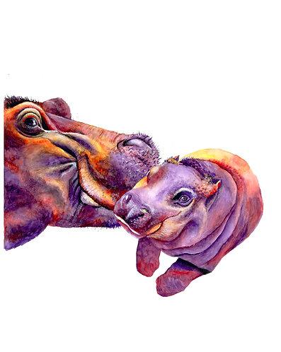 Baby Hippo gets a Kiss - Original