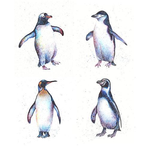 Penguins Mini Print Bundle