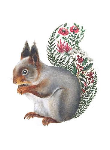 Winter Squirrel - Original