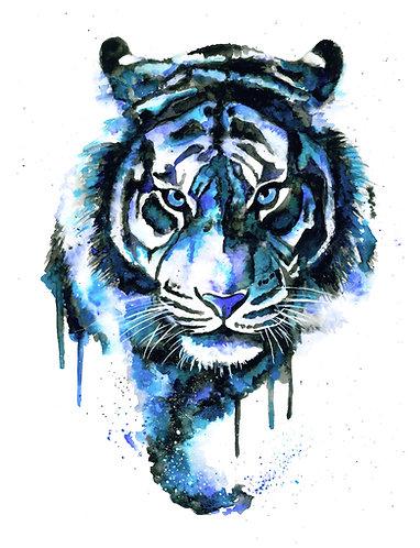 Blue Tiger - Original