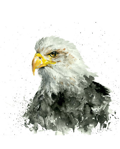 American Pride - Original