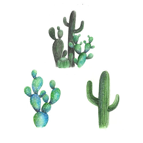 Cactus Mini Print Bundle