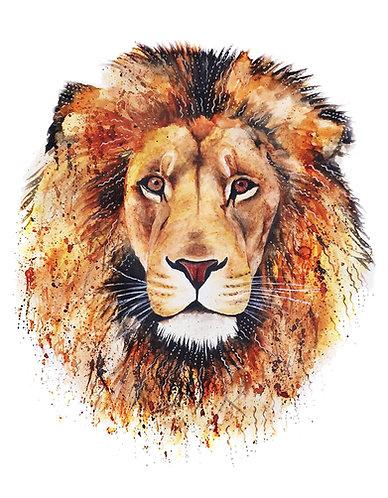 Orange Lion - Original