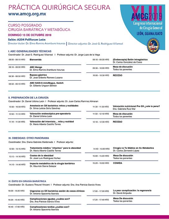 Programa XLIIICICG2019-01.png