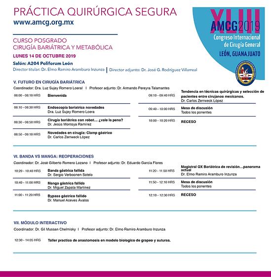 Programa XLIIICICG2019-03.png