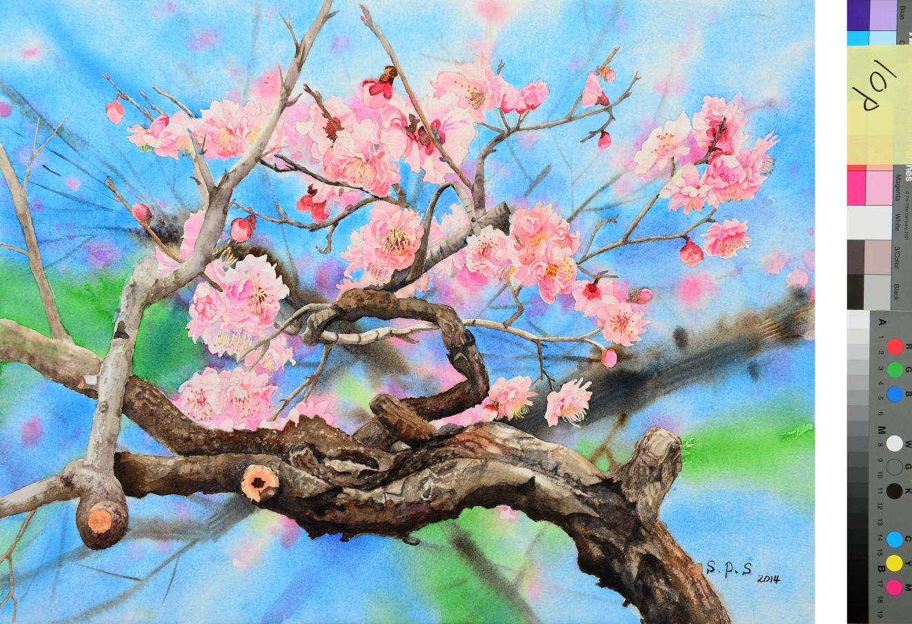 봄소식-매화