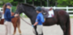 pony_check