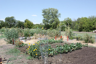 Denton Parks and Rec maintains one community garden.