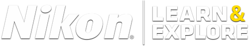 resp-logo.webp