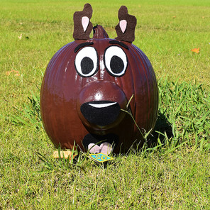 Scooby Doo Painted Pumpkin
