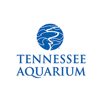 Tennessee Aquarium Webcam