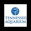 Tennessee Aquarium Webcam