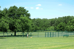 Wiggley FIeld Dog Park