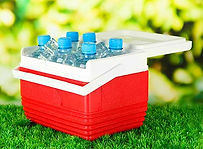 Small ice chest of six water bottles
