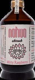 Minty-rasberry-shrub-500.png