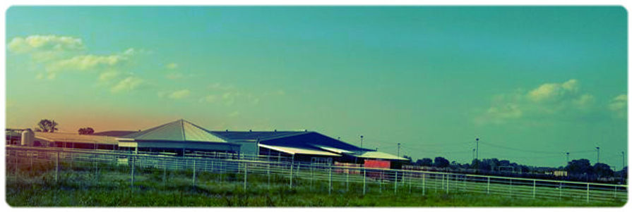 rent arena, horse trainers, riding organizations, horse clinics, riding demonstrations, training demonstrations,