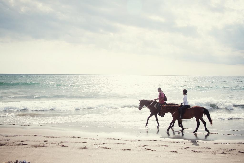 1085x1500_Бали_Horse Riding2