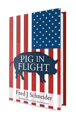 Pig In Flight - Hardcover