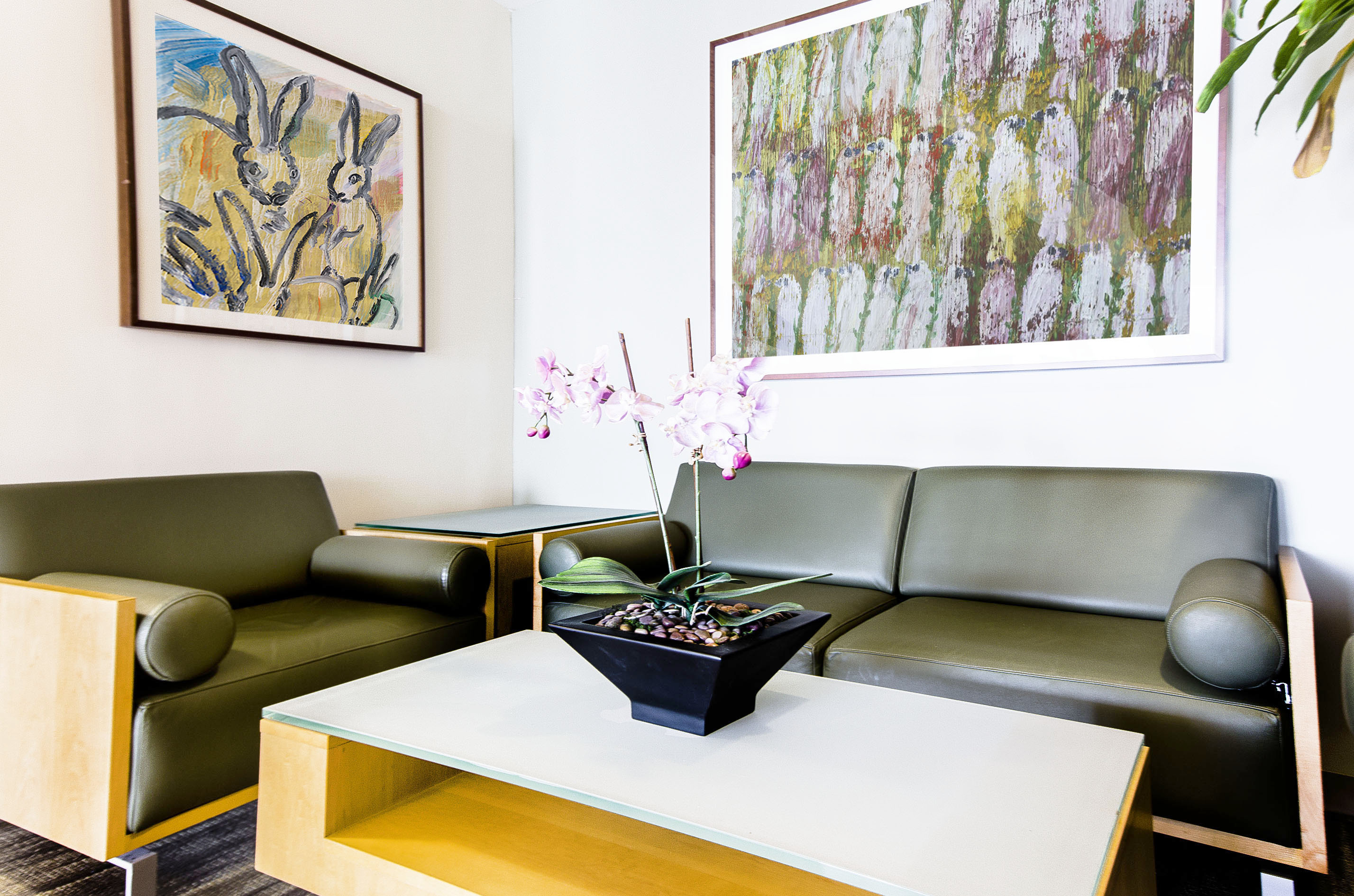 new york interior designer tova kook