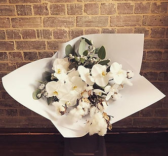 Saturday's are for cotton 💃🏼💥#botanic