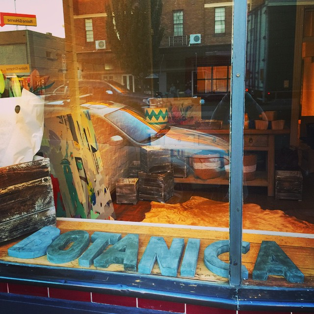 Instagram - Breathing life into our new digs! Botanica Flora is taking shape!!!