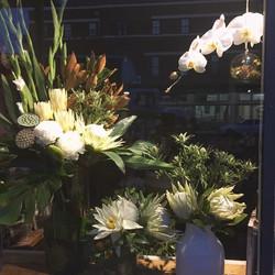 Instagram - Friday night window at Botanica...jpg