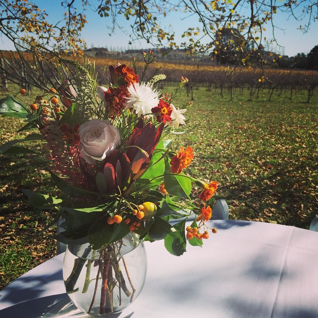 Instagram - It was a nice day for an autumn wedding...jpg