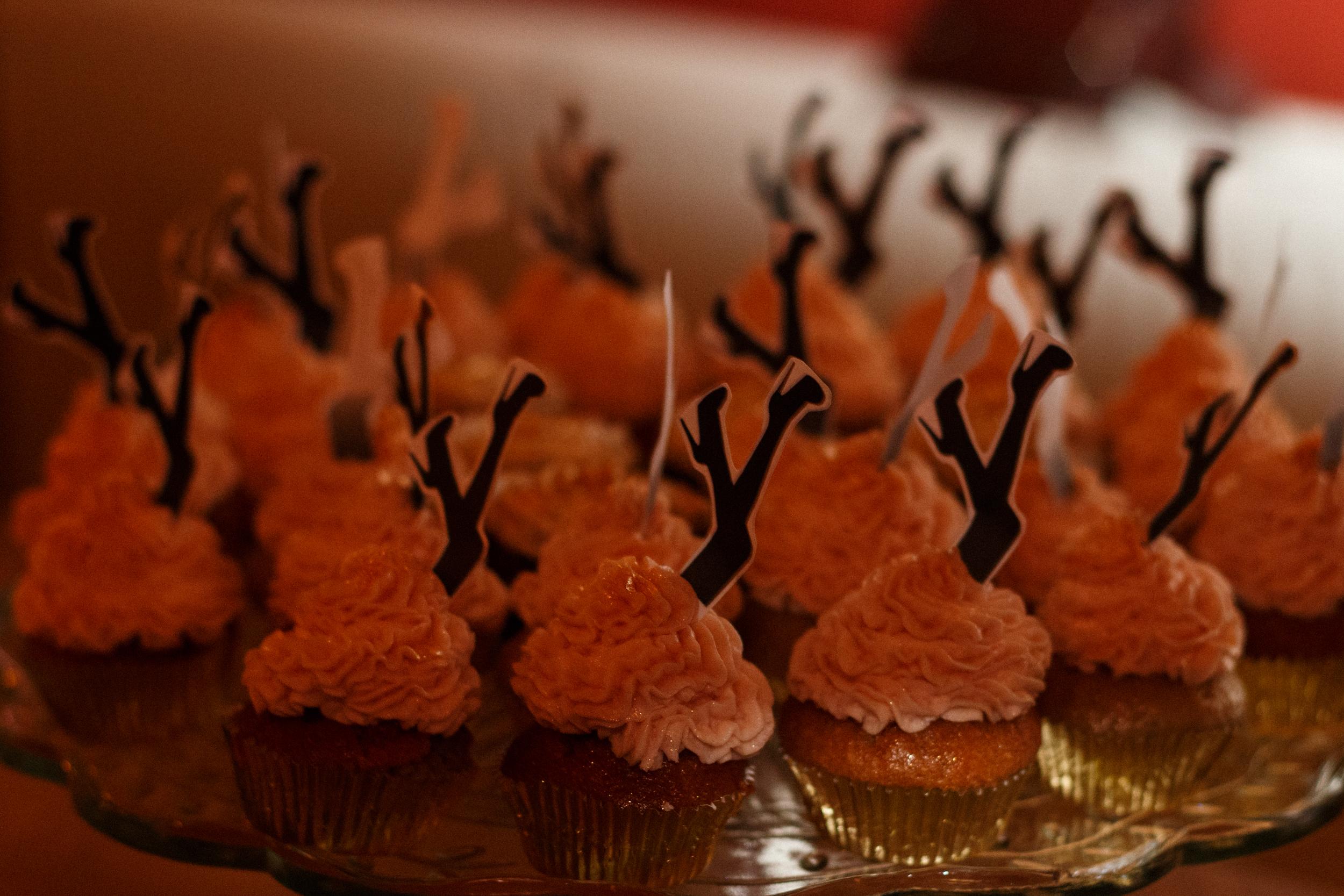 Cupcakes by Alda Villiljós