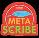 meta-scribe-logo.png