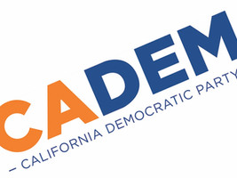 California Progressives step back slightly in ADEM elections