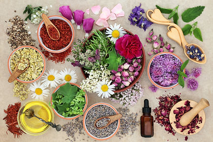 Herbal medicine preparation with herbs a