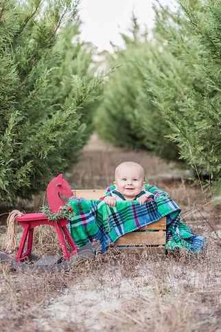 MollyMikeMikey_Christmas2018-61.jpg